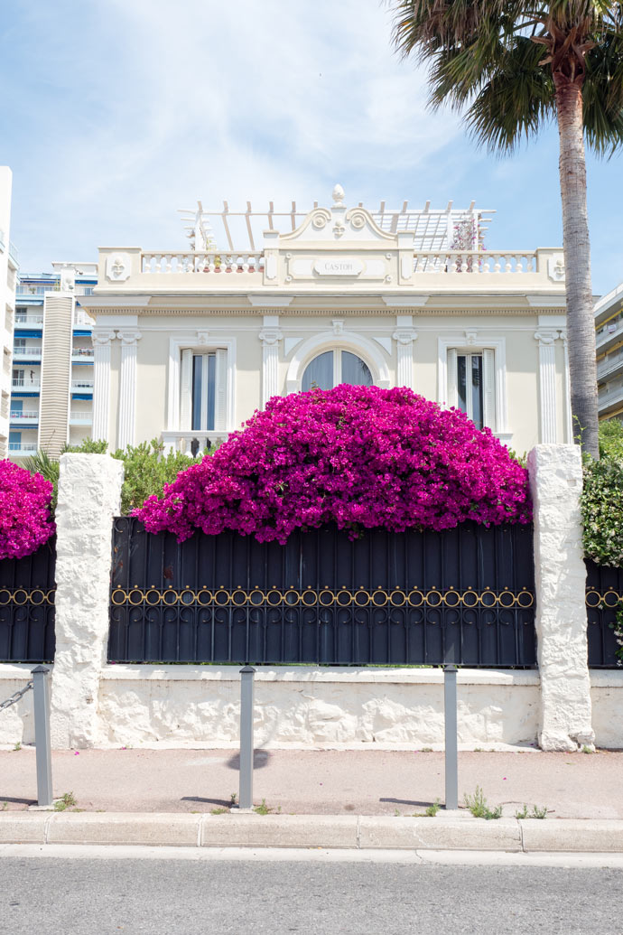 Beautiful French Houses