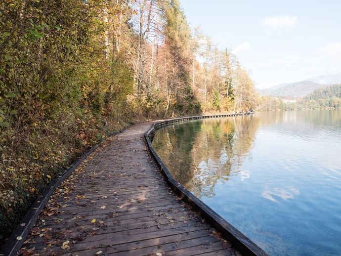 Lake Bled Path