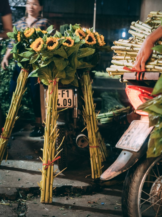Sunflowers Resting Against A Bike Hanoi