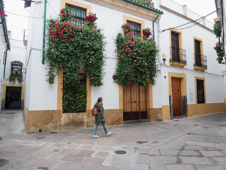 Streets With Flowers In Cordoba